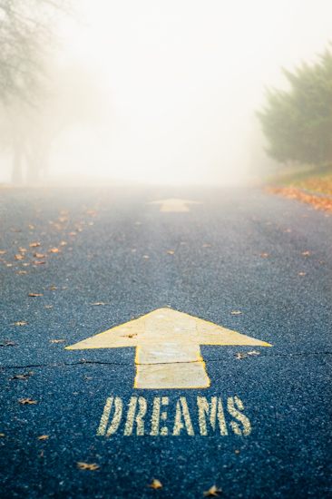 dream perspectives If searching for the book dreams and nightmares: martin luther king jr, malcolm x, and the struggle for black equality in america (new perspectives on the history of.